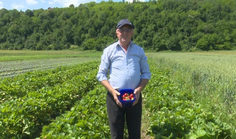 HAŠIMOVIĆI Porodica koja se generacijama bavi poljoprivredom