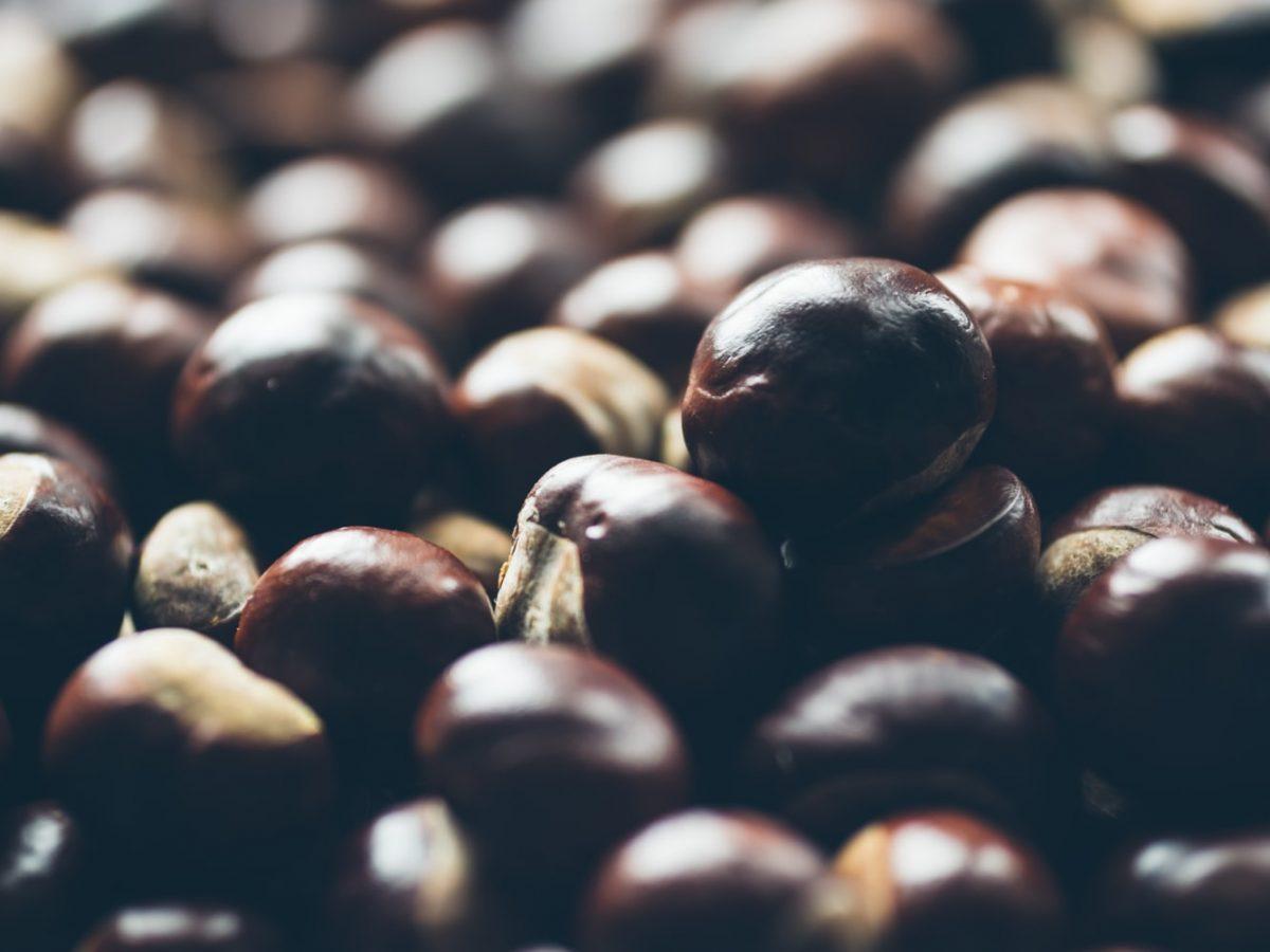Sezona je kestena, počastite se kremastom čorbom bogatom vitaminima