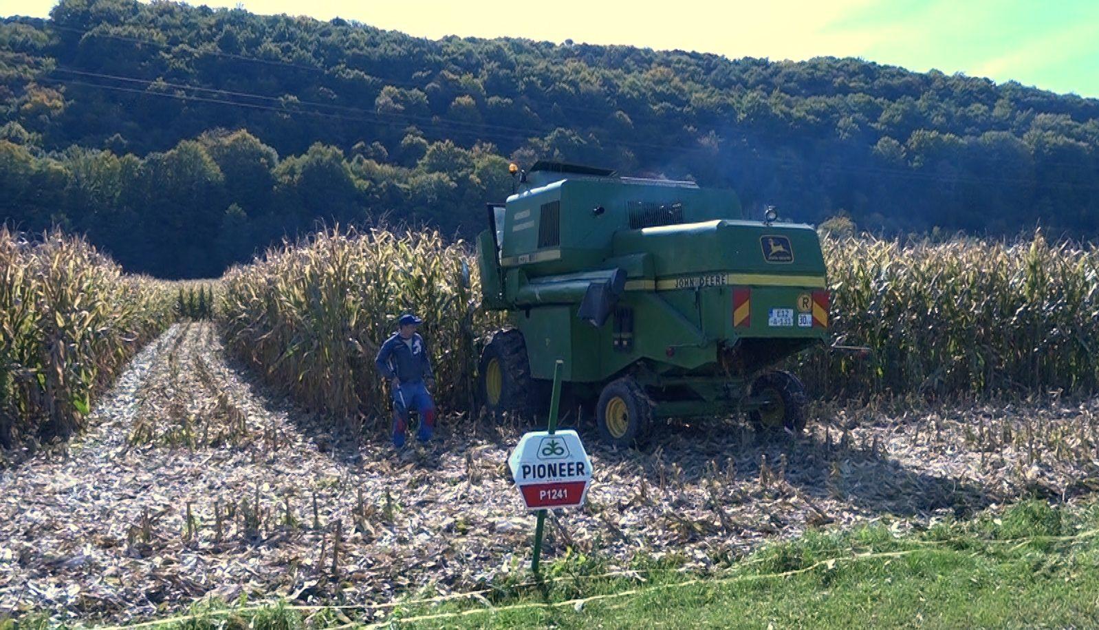 Rekordan prinos kukuruza u Sanskom Mostu
