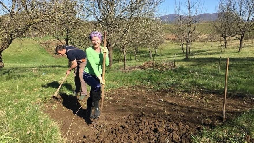 Elvira Serdarević: Proizvodnja zdrave hrane kao životna misija