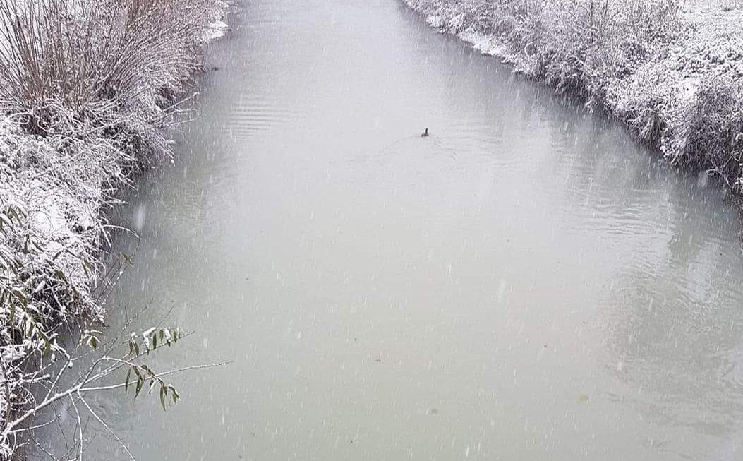 Općinska inspekcija se oglasila zbog onečišćenja rijeke Blihe